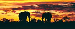 vacanza-sudafrica-580x226
