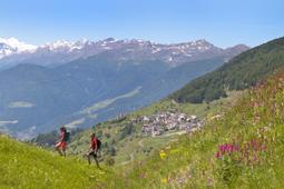 Suedtirol, Vinschgau, Matscher Tal, zirka 2 km östlich vom Dorf Matsch, Wegkreuz auf Hügel mit Ortlerblick,