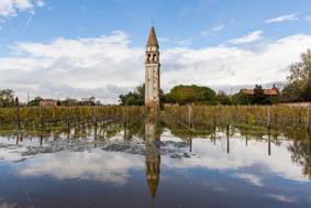 venetian-wine-experience-bisol-delicanto-venice