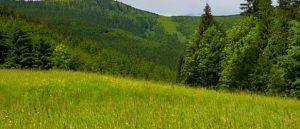 European Heritage Label a due nuovi siti in Repubblica Ceca