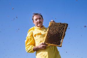 L'Oscar del miele premia l'Abruzzo, medaglia di platino al London Honey Award